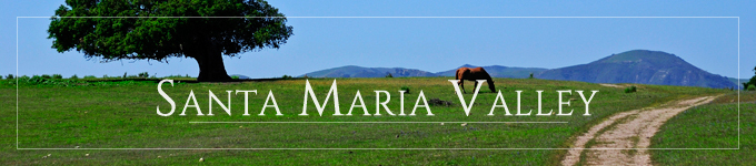 Tranquil scene with green grass, a lone tree and hills in the background in theSanta Maria Valley just north of Santa Barbara Wine Country