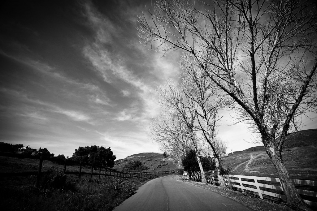 A dramatic black and white scene of Ballard Canyon Rd. in the Ballard Canyon AVA, with vineyards, trees, and hills